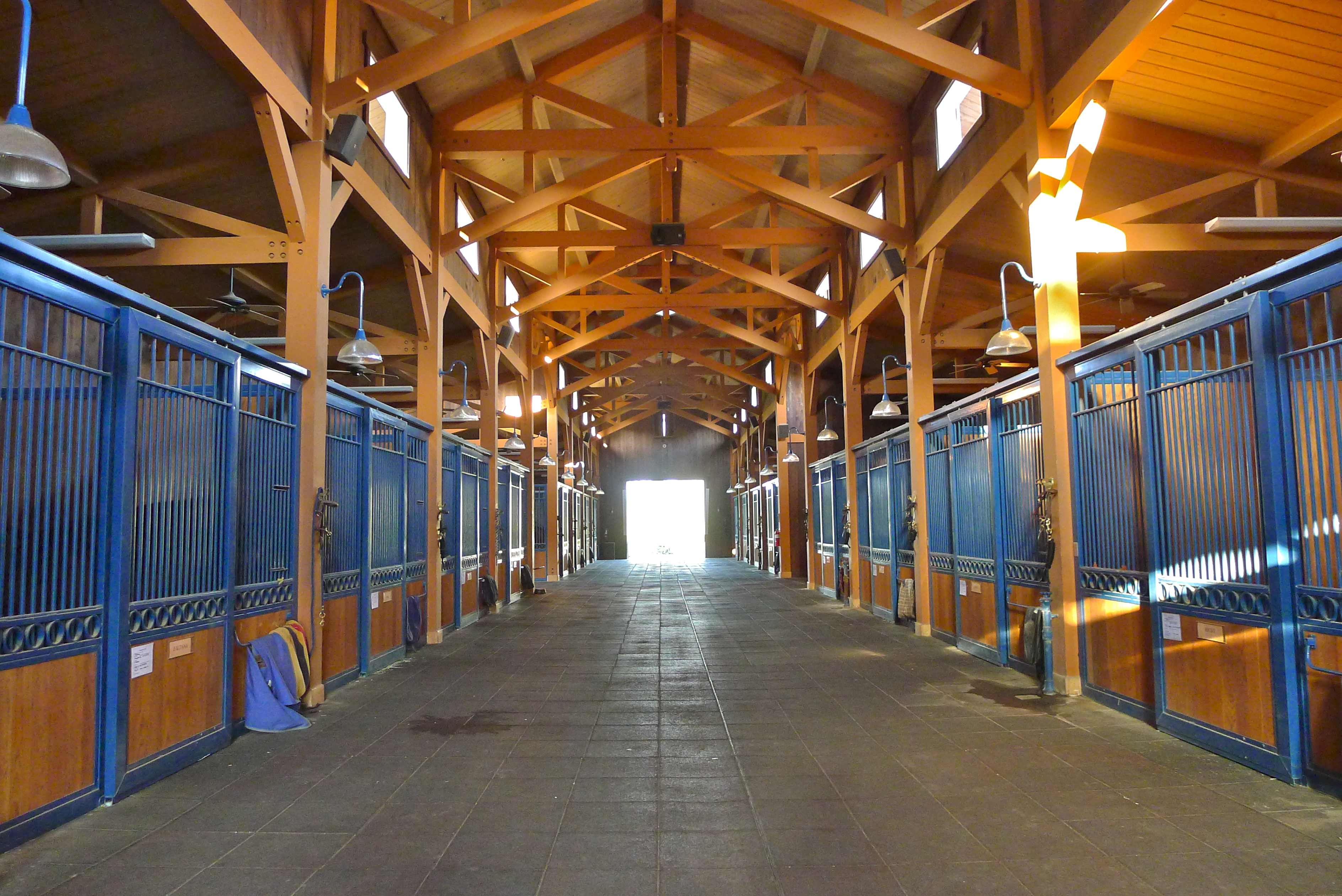 Inside Horse Barn equestrian | the beauty bee